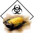 monsanto-toxic1