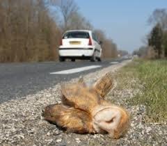 verkeersslachtoffer